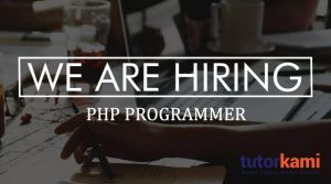 we-are-hiring-programmer